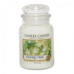 YANKEE CANDLE, Duftkerze Linden Tree, large Jar (623g)_39853