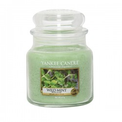 YANKEE CANDLE, Duftkerze Wild Mint medium Jar (411g)_39862